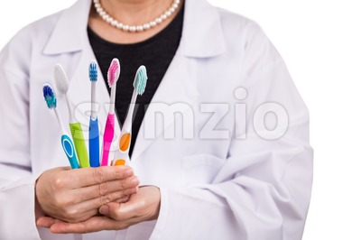 Dentist holding toothbrushes with different head and bristle design Stock Photo
