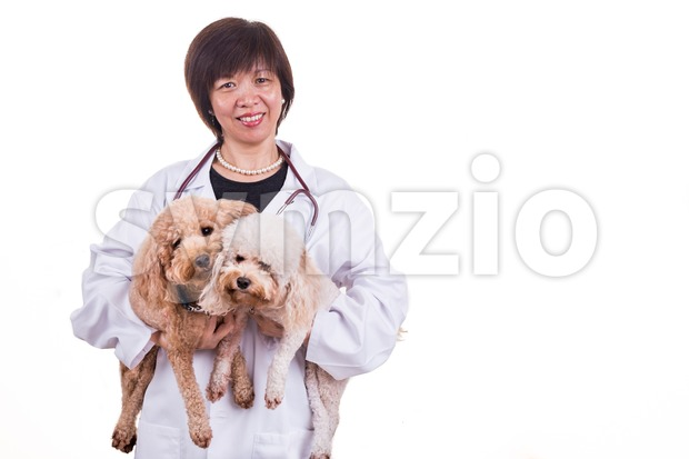 Smiling Asian female veterinary doctor hugging pet dog Stock Photo