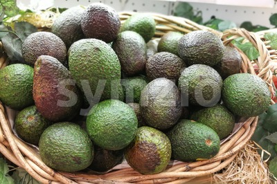 Whole fresh avocado on basket in supermarket Stock Photo