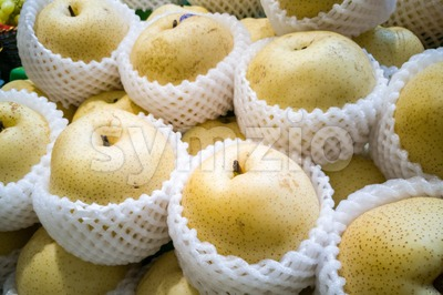 Whole yellow gong pear wrapped in protective foam Stock Photo
