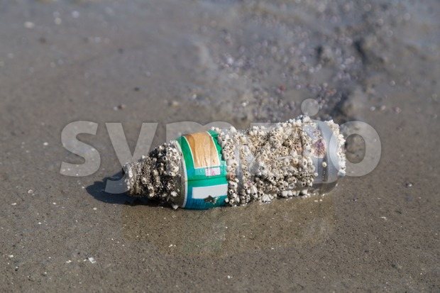 Bottle with corals washed up the sea shore beach sand Stock Photo