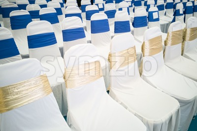 Rows of decorated banquet chairs Stock Photo