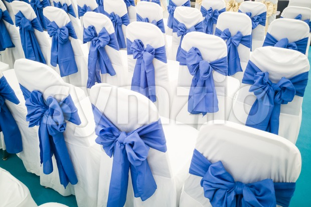 Rows of decorated banquet chairs at event