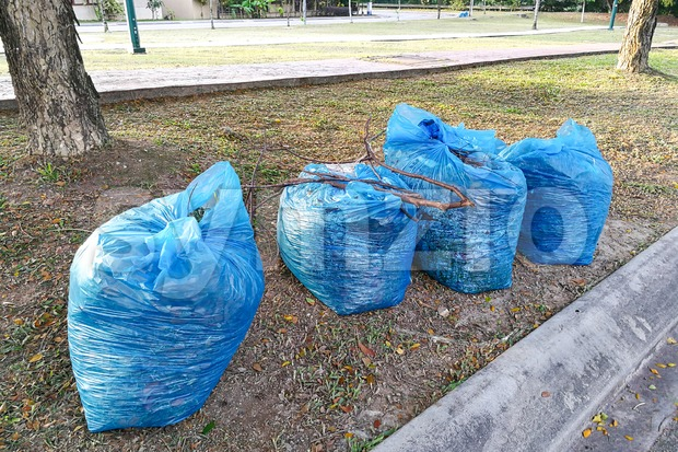 Bags of garden refuse packed for recycle into agriculture compost waiting for collection along street