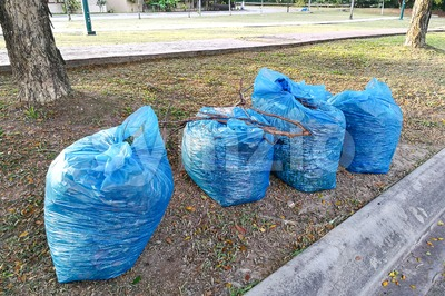 Bags of garden refuse packed for recycle into compost Stock Photo