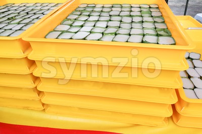 Trays of tepung pelita, popular sweet dessert in Malaysia Stock Photo