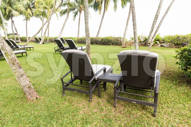 Relaxing deck chairs at tropical resort with lush grass with nobody