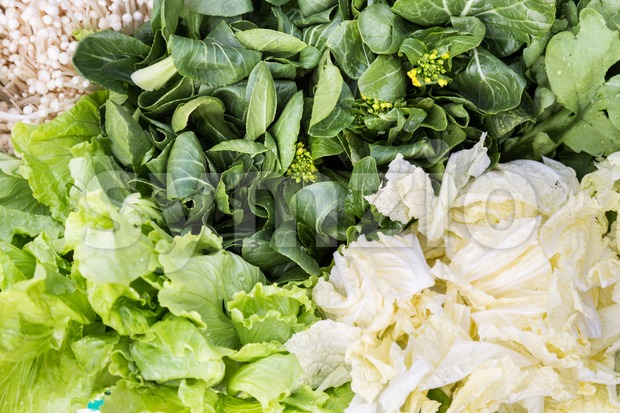 Close-up of healthy organic green leafy vegetable Stock Photo