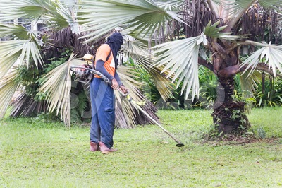 Worker with protective clothing cutting grass with grass cutter machine Stock Photo