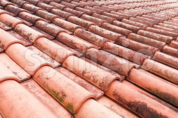 Close-up on moldy roof tiles in humid tropical climate Stock Photo
