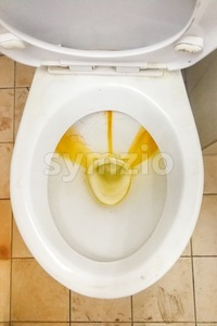 Dirty toilet bowl with limescale stain deposits Stock Photo