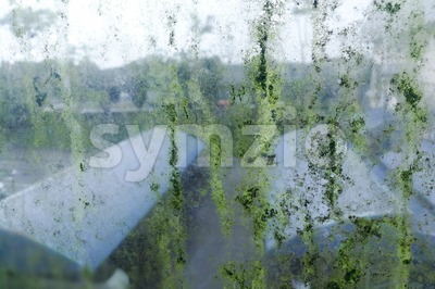 Dirty unhygienic mold stain on glass window because dampness Stock Photo