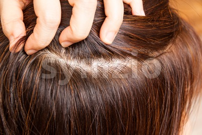 Close-up on dyed hair roots of woman.  No more grays. Stock Photo