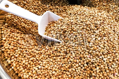 Closeup of coriander seeds or ketumbar in bucket Stock Photo