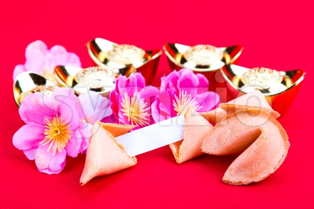 Chinese fortune cookies with decorative gold nuggets, plum blossom flowres and blank predictive label on red background