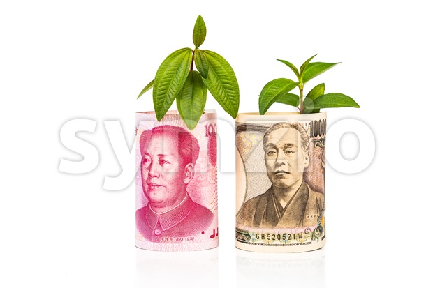 Concept of currency growth rate and performance between China Yuan and Japanese Yen with green plant