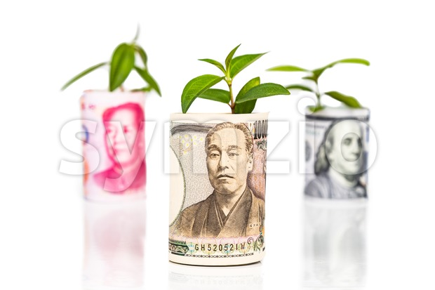 Concept of Japanese Yen growth and performance ahead of China Yuan and US Dollar using green plant as analogy