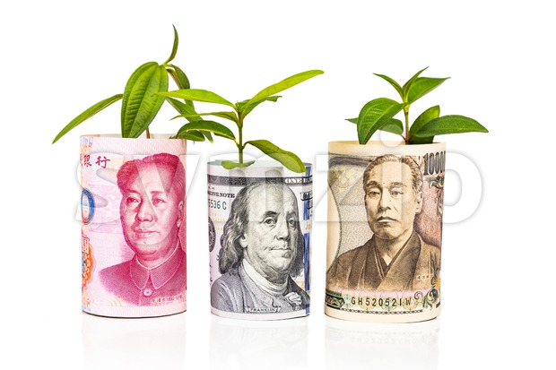 Concept of currency growth rate and performance between China Yuan, Japanese Yen and US Dollar with green plant
