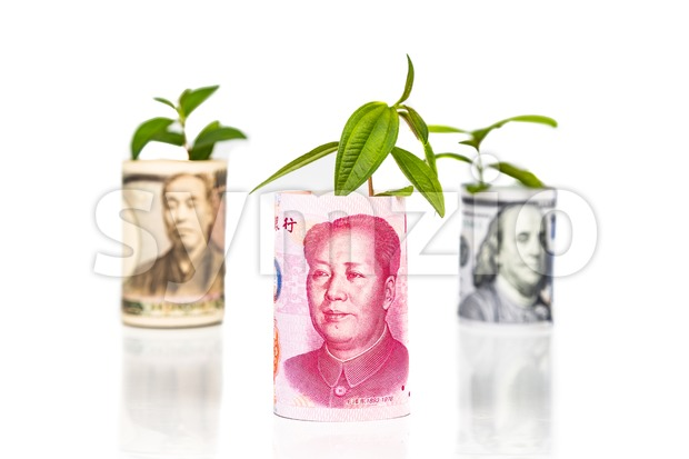 Concept of China Yuan growth and performance ahead of Japanese Yen and US Dollar using green plant as analogy