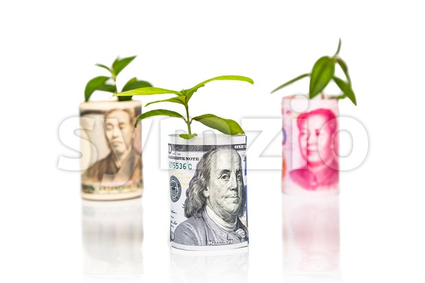 Concept of US Dollar growth and performance ahead of Japanese Yen and China Yuan using green plant as analogy
