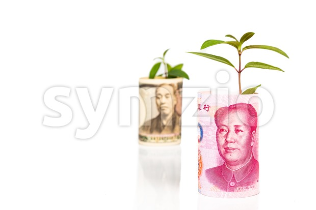 Concept of Japanese Yen growth with green plant as analogy Stock Photo