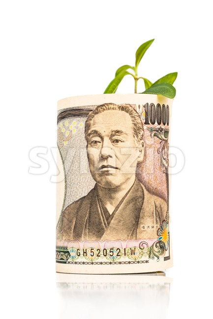 Concept of growing Japanese Yen currency note with green plant Stock Photo