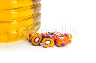 Refined palm oil in bottle with fresh oil palm fruits. Stock Photo
