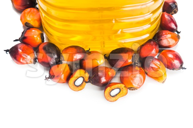 Refined palm oil in bottle with fresh oil palm fruits