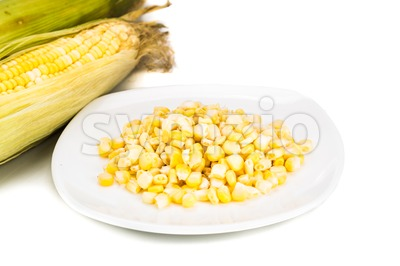 Fresh maize cob and kernels on plate against white background Stock Photo