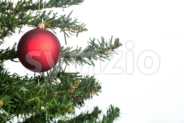White Christmas background with fir tree and red ornament