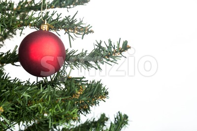 White Christmas background with fir tree red and ornament. Stock Photo