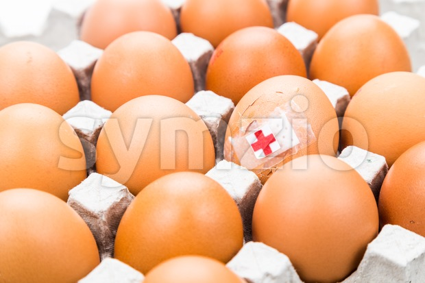Concept of cracked egg with bandage placed with other eggs on tray. Stock Photo