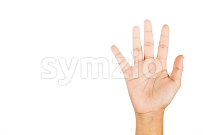 Hand gesturing number five against white background. Stock Photo