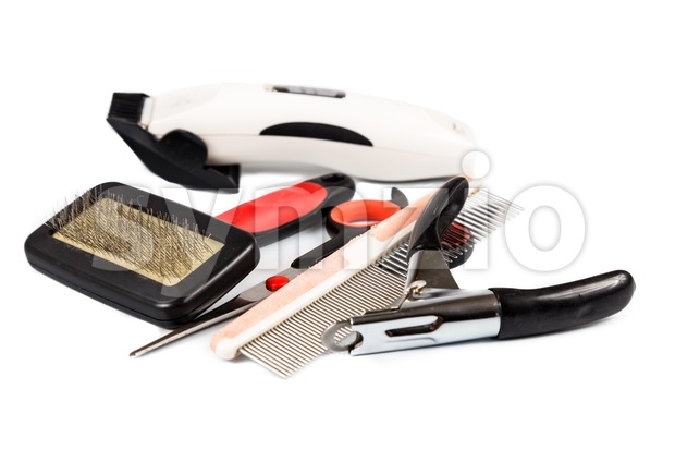 Dog grooming tools and accessories set Stock Photo