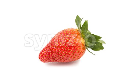 Closeup of two fresh juicy organic strawberries with white background Stock Photo
