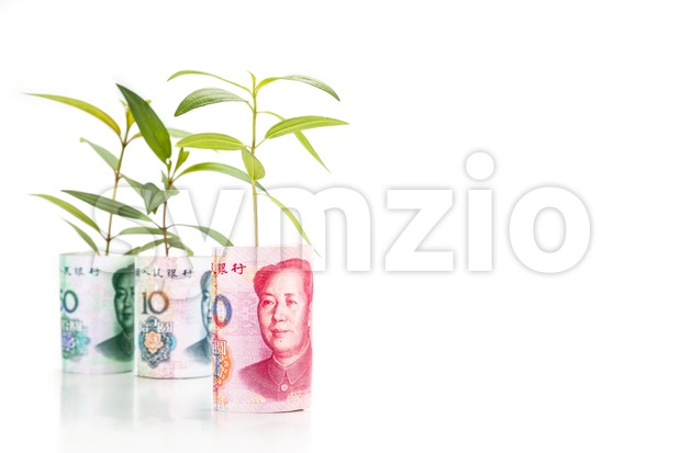 Concept of green plant grow on China Yuan Renminbi currency note Stock Photo