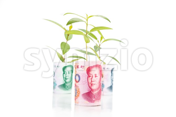 Concept of green plant grow on China Yuan Renminbi currency note.