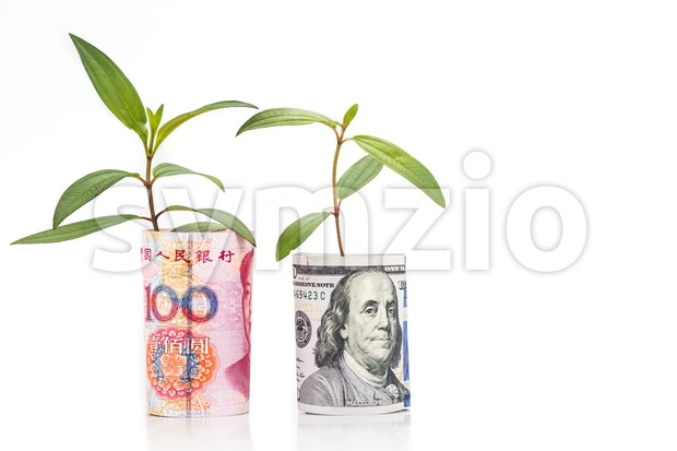 Concept of green plant grow on USD against China Renminbi currency.