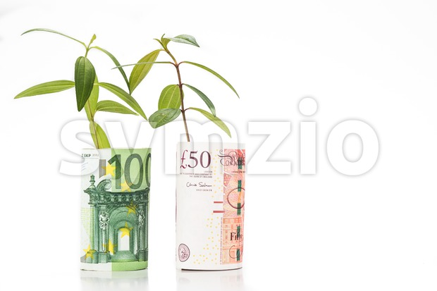 Concept of green plant grow on British Pound against EURO currency Stock Photo