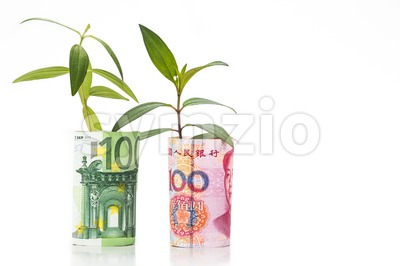 Concept of green plant grow on China Yuan Renminbi against EURO currency Stock Photo