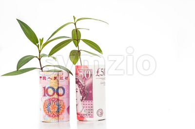 Concept of green plant grow on China Yuan Renminbi against Sterling Pound Stock Photo