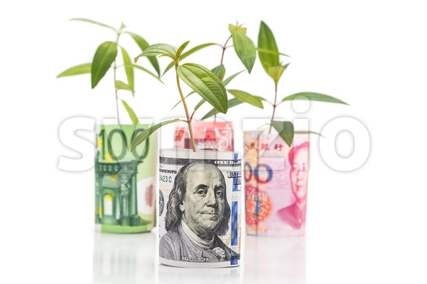 Concept of green plant grow on currency with USD in foreground Stock Photo
