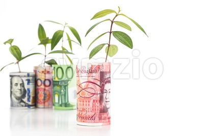 Concept of green plant grow on currency with Sterling Pound in foreground Stock Photo