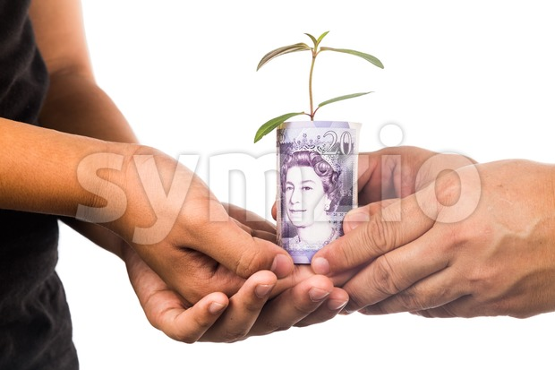 Concept of presenting plant growing Sterling Pound, symbolizing growing financial wealth Stock Photo