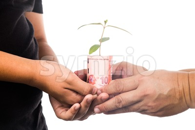 Concept of presenting plant growing from Malaysia Ringgit, symbolizing growing financial wealth Stock Photo