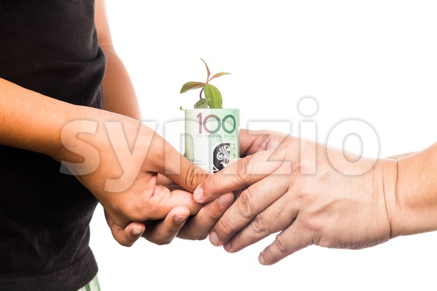 Concept of presenting plant growing from EURO money, symbolizing growing financial wealth.