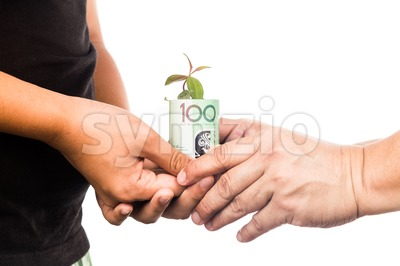 Concept of presenting plant growing from EURO money, symbolizing growing financial wealth Stock Photo