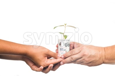 Concept of presenting plant growing from money, symbolizing growing financial wealth Stock Photo