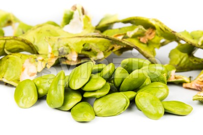 Petai seeds with the its skin, seed pods and cluster at background Stock Photo