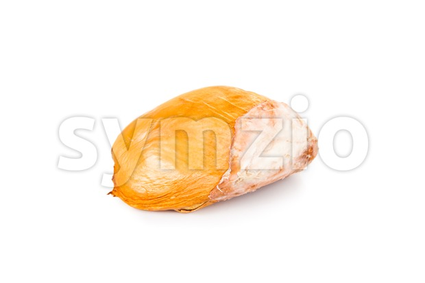 Big, chunky, round, and hard durian fruit seeds isolated in white Stock Photo